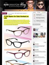 Eyecessorize Blog Dec 18 2014